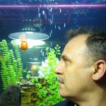 АФ и аквариум