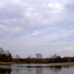 Datch landscape